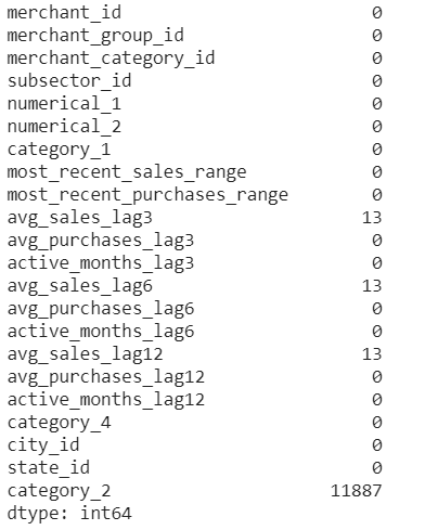 merchants dataset